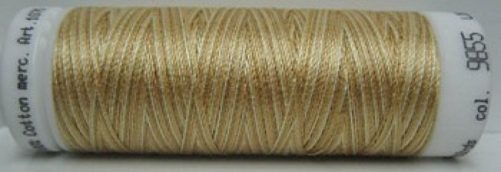 Mettler Silk Finish multi: 9855