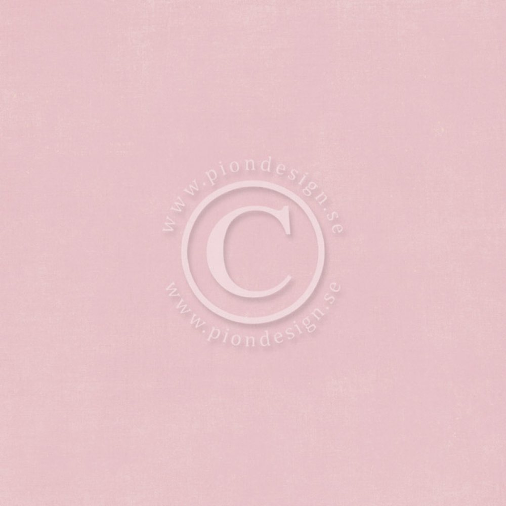 Pion Design Palette- Pion Pink II: PD6116