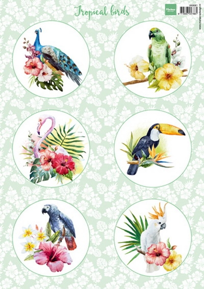 Marianne Design- 3d knipvel- Tropical Birds: VK9561
